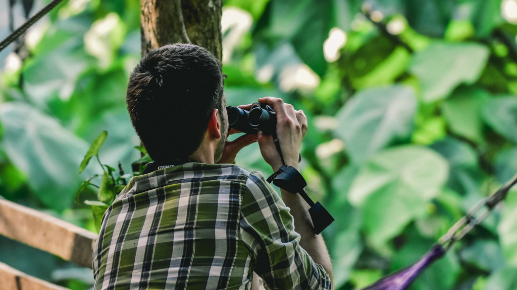 Chiang Dao Bird Watching
